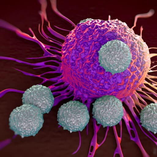 Car T Cells